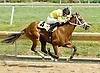 Pecky's Boy winning at Delaware Park on 8/1/11.