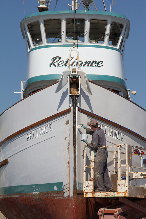 Port Townsend, purse seiner, Reliance, man painting hull, on the hard, Boat Haven, boatyard, Port of Port Townsend, Jefferson County, Olympic Peninsula, Washington State, Pacific Northwest, USA,