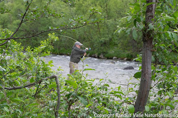 Mann fisker med flue i Storelva ved Kunes i Finnmark. ---- Man fly fishing in Storelva river in Finnmark, Norway.