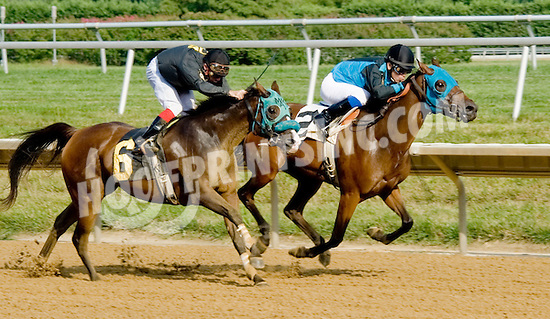 Ovour the Rainbow winning then being disqualified at Delware Park on 7/30/12