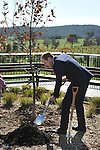 AUSTRALIA, Canberra : Britains Prince William plants a tree while visiting the National Arboretum, Canberra on April 24, 2014. Britain's Prince William, his wife Kate and their son Prince George are on a three-week tour of New Zealand and Australia. AFP PHOTO / Mark GRAHAM