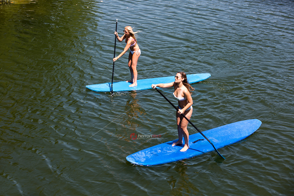 Two attractive fit females exercise on Stand Up Paddling during a triple-digit hot summer's day on Lady Bird Lake in Austin, Texas.