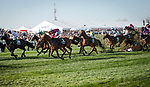 LIVERPOOL - APRIL 14: A blanket of horses take a fence in the Randox Health Grand National Steeplechase at Aintree Racecourse in Liverpool, UK (Photo by Sophie Shore/Eclipse Sportswire/Getty Images)