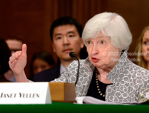 Janet L. Yellen, Chair, Board of Governors of the Federal Reserve System, testifies before the United States Senate Committee on Banking, Housing, and Urban Affairs on &ldquo;The Semiannual Monetary Policy Report to the Congress&rdquo; on Capitol Hill in Washington, DC on Thursday, July 13, 2017.<br /> Credit: Ron Sachs / CNP