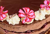 Torte im Café Liebes Bisschen, Spritzenplatz 5, Hamburg - Ottensen, Deutschland, Europa<br /> Cake in Café Liebes Bisschen, Spritzenplatz 5, Hamburg - Ottensen, Germany, Europe