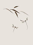 Two dragonflies and leaves, delicate romantic design based on Japanese Zen ink painting artwork. Brown dragonflies on light beige ivory background.