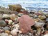 Stones | Piedras | Steine
