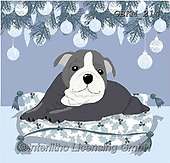 Kate, CHRISTMAS ANIMALS, WEIHNACHTEN TIERE, NAVIDAD ANIMALES, paintings+++++Christmas page 80 #,GBKM214,#xa# ,dog,dogs