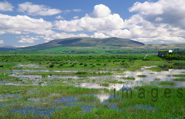 Wetlands near Wigtown Harbour looking across Wigtown Bay to Cairnsmore of Fleet in the Machars of Galloway Scotland UK