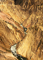 Yellowstone River, Yellowstone National Park, WY, Wyoming, Canyon Village, Scenic view of the Yellowstone River flowing through Yellowstone Canyon in Yellowstone Nat'l Park in Wyoming. The Grand Canyon of Yellowstone.