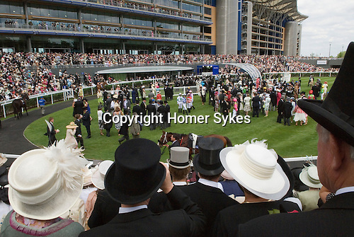 The new parade ground and grandstand. Horse racing at Royal Ascot, Berkshire, England. 2006.
