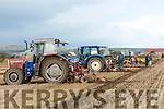 At the Ardfert Ploughing association Co. Championship Ploughing Match  on the lands of Michael McCarthy, Ballinprior, Ardfert on Sunday