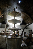 Laguna Seca hacienda/mezcal distillery, San Luis Potosi/Zacatecas, Mexico