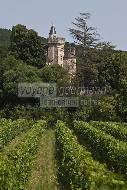 Europe/Europe/France/Midi-Pyrénées/46/Lot/Parnac: Vignoble AOC Cahors  et Château de Langle XVI, remanié au XIX°s à Caillac