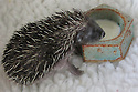 07/05/16<br />