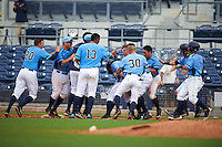 Charlotte Stone Crabs designated hitter Jace Conrad (23) is mobbed by teammates including Mike Marjama (20), Maxx Tissenbaum (8), Isaac Gil (13), Braxton Lee (30), Kean Wong (4), Granden Goetzman (6) and Andrew Velazquez (1) after a walk off base hit during a game against the Dunedin Blue Jays on July 26, 2015 at Charlotte Sports Park in Port Charlotte, Florida.  Charlotte defeated Dunedin 2-1 in ten innings.  (Mike Janes/Four Seam Images)