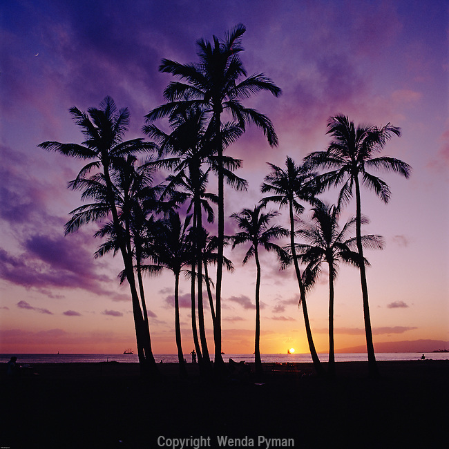 A dramtic sunset with clouds and a purple sunset on Kapiolani Beach Park.