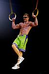 Cirque du Soleil-Totem.