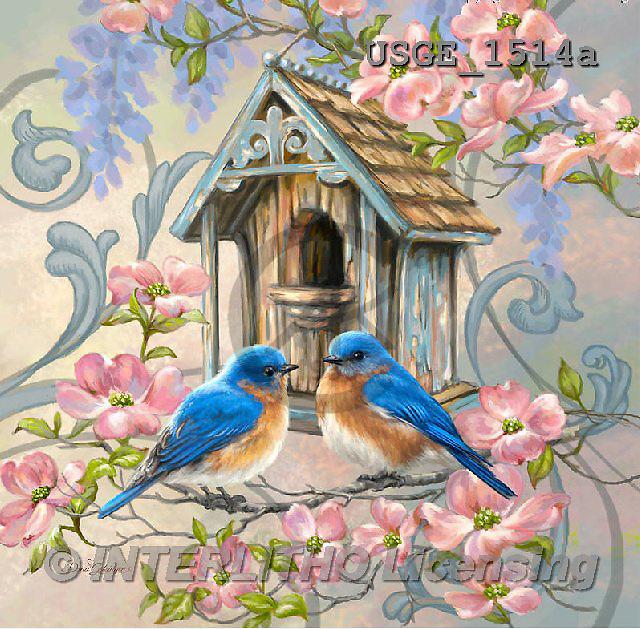 Dona Gelsinger, STILL LIFE STILLLEBEN, NATURALEZA MORTA, flowers, Blumen, flores, paintings+++++,USGE1514A,#I#,#F# birdhouse