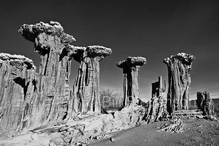 An image sand towers near Mono Lake in California. These are not the tufa towers formed by hydrothermal vents usually seen in pictures of Mono Lake. These have been formed by wind erosion of the shorelne.