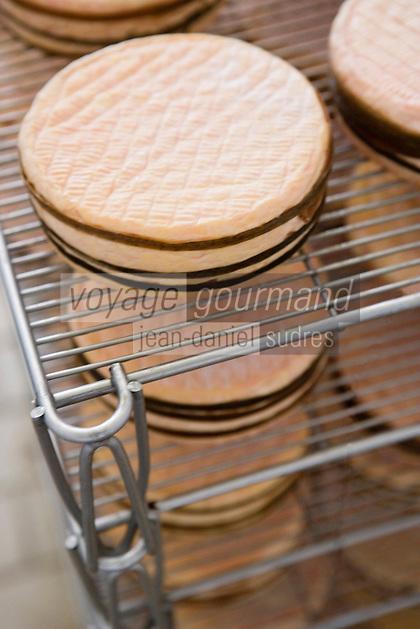Europe/France/Normandie/Basse-Normandie/14/Calvados/Pays d'Auge/Saint-Pierre sur Dives/Boissay: Production du Livarot au lait cru à la fromagerie La Houssaye - affinage des fromages