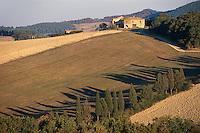 Italien, Toskana, Huegel be Colle Val d'Elsa