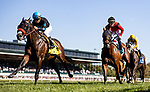 OCT 05: Stubins with Joel Rosario up wins the Woodford  Presented y Keeneland Select at Keeneland Racecourse, Kentucky on October 05, 2019. Evers/Eclipse Sportswire/CSM