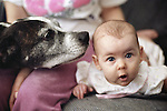 Young girl on couch with surprised look on face with Pit Bull dog Marysville Washington State USA
