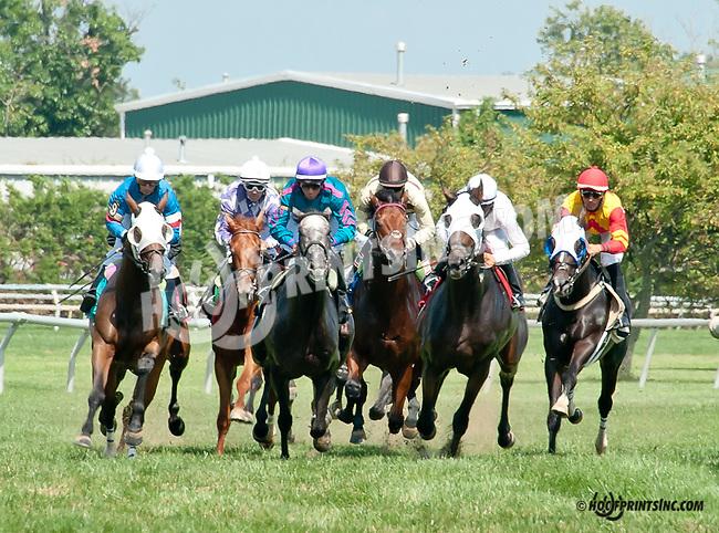 Key Decision winning at Delaware Park on 8/25/14