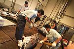 Sapporo Una dei settori economici principali di Hokkaido &egrave; la pesca e a Sapporo si trova il secondo pi&ugrave; grande mercato di pesce dopo quello di Tokyo. Anche qui all'asta vanno soprattutto pesci pregiati come il tonno ed il salmone. Nelle foto: l'asta dei tonni viene fatta in una sala a parte dove vengono anche preparati con la testa tagliata e divisi in piccoli pezzi<br /> &copy; Paolo della Corte.