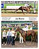 Joy Rising winning at Delaware Park on 9/6/12