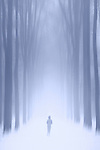Silhouette of a girl or a young woman running away between rows of trees in a strange blue world