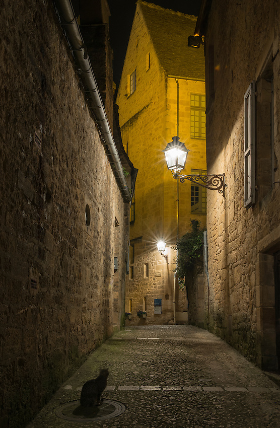 An alley cat watches over a dark alley in Sarlat-la-Canéda at night, by the light of the gas lamps.