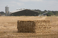 Bale of wheat straw <br /> ©Tim Scrivener Photographer 07850 303986<br />      ....Covering Agriculture In The UK....