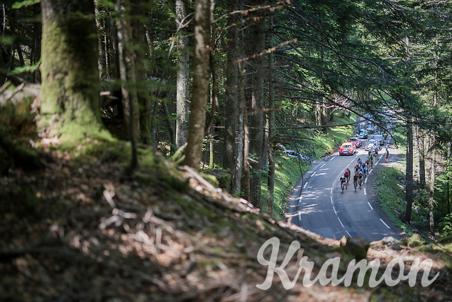 breakaway group through the forest<br /> <br /> stage 7: Aoste &gt; Alpe d'Huez (168km)<br /> 69th Crit&eacute;rium du Dauphin&eacute; 2017