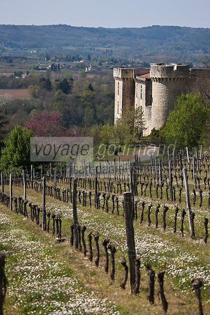 Europe/Europe/France/Midi-Pyrénées/46/Lot/Grézels: Le vignoble du vin de Cahors et le Château de La Coste XIV ème et XVII ème