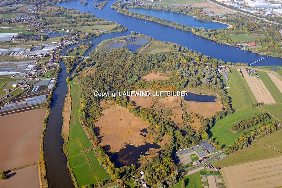 Die Reit: DEUTSCHLAND, HAMBURG 13.10.2018: Das Naturschutzgebiet Die Reit liegt in den Hamburger Stadtteilen Reitbrook und Allerm&ouml;he in den Marschlanden, zwischen dem Zusammenfluss der Dove Elbe und Gose Elbe.<br /> <br /> Das Naturschutzgebiet im S&uuml;dosten Hamburgs hat eine Gr&ouml;&szlig;e von 92 Hektar. Es umfasst das 1973 ausgewiesene Gebiet Die Reit und die 2011 erfolgte Erweiterung um die Fl&auml;chen Die Hohe, Kleiner Brook und ein rund 3,3 ha gro&szlig;es Gebiet im S&uuml;dosten. Die heutige Gel&auml;ndestruktur der Reit ist wesentlich auf den Betrieb einer Ziegelei zur&uuml;ckzuf&uuml;hren. Gepr&auml;gt wird das Gebiet von den ausgedehnten Schilfr&ouml;hrichten, artenreichen Weidengeb&uuml;schen und dem urw&uuml;chsigen Birkenbruchwald, zwei gr&ouml;&szlig;eren Teichen sowie vielen Kleingew&auml;ssern und Gr&auml;ben. Die Hohe ist ein vielf&auml;ltiges Teichgel&auml;nde auf einem ehemaligen Sp&uuml;lfeld. Der Kleine Brook wird gepr&auml;gt durch Gr&uuml;nland im Vorland der Dove Elbe.<br /> <br /> Den Schutzstatus erhielt Die Reit in erster Linie wegen ihrer Bedeutung als Brut- und Rastgebiet mitteleurop&auml;ischer Sing- und Zugv&ouml;gel, Die Hohe f&uuml;r das bedeutende Vorkommen des Kammmolchs und der Kleine Brook aufgrund seiner Bedeutung f&uuml;r Wiesenv&ouml;gel, insbesondere f&uuml;r die Uferschnepfe. Auch durch weitere Amphibienvorkommen, vielerlei Insekten und seine Flora zeichnet sich das Schutzgebiet aus.