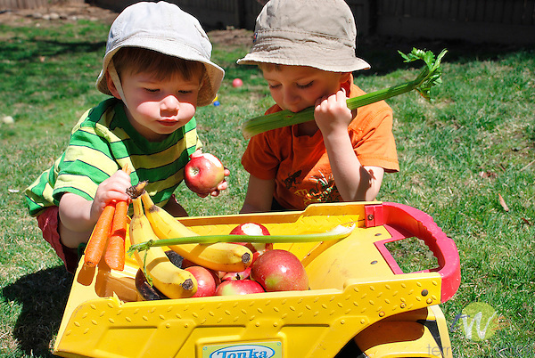 Sylas and Atticus with fruit truck