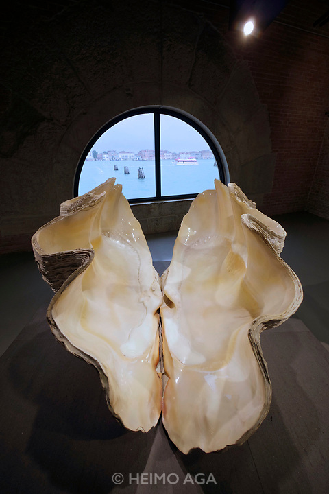 Punta della Dogana.<br /> Damien Hirst: Treasures from the Wreck of the Unbelievable.<br /> Extraordinarily Large F Museum Specimen<br />