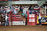 Smiley Hay on 059 Hawk of SY during first round of the Fort Worth Stockyards Pro Rodeo event in Fort Worth, TX - 8.2.2019 Photo by Christopher Thompson