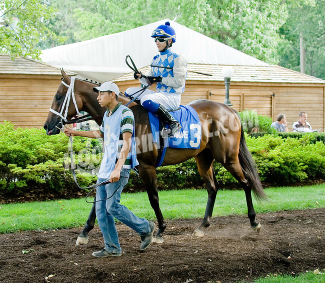 Shockman before The Par Four Stakes at Delaware Park on 7/12/12