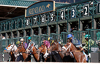 LEXINGTON, KY - April 08, 2017.  The Start of the 80th running of the Central Bank Ashland Grade 1 $500,000 at Keeneland Race Course, won by #7 Sailor's Valentine (Grey horse Purple/Orange jockey silks) at Keeneland Race Course. (Photo by Candice Chavez/Eclipse Sportswire/Getty Images)