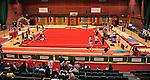 Gymnastics - Day 1 -  Wales Championships 2014 - Sophia Gardens- Saturday  01st March 2014  - Cardiff<br /> <br /> © www.sportingwales.com- PLEASE CREDIT IAN COOK