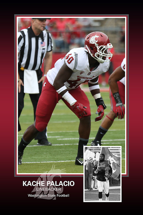 Memorabilia print for Kache Palacio from the 2015 Washington State football season in which the Cougs went 9-4, including a Sun Bowl victory over the Miami Hurricanes.