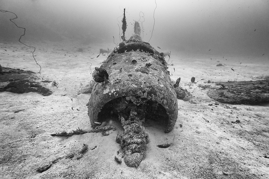 Munda, Western Province, Solomon Islands; an F4U Corsair fighter plane, which crashed into the sea during WWII, resting upright on the sandy sea floor, nearly fully intact except for it's propeller