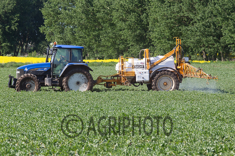 Spraying Beans<br /> Picture Tim Scrivener 07850 303986<br /> tim@agriphoto.com<br /> ?.covering agriculture in the UK?.