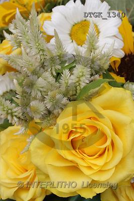 Gisela, FLOWERS, photos(DTGK1340,#F#) Blumen, flores, retrato