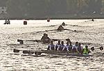 Rowing, Head of the Lake Regatta, November 2 2014, Seattle, Washington State, Lake Washington Rowing Club, Annual Regatta, Lake Washington Ship Canal,
