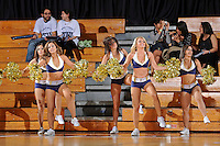 25 February 2012:  FIU's Golden Dazzlers entertain the crowd during a break in the action as the FIU Golden Panthers defeated the University of South Alabama Jaguars, 58-55 (OT), at the U.S. Century Bank Arena in Miami, Florida.