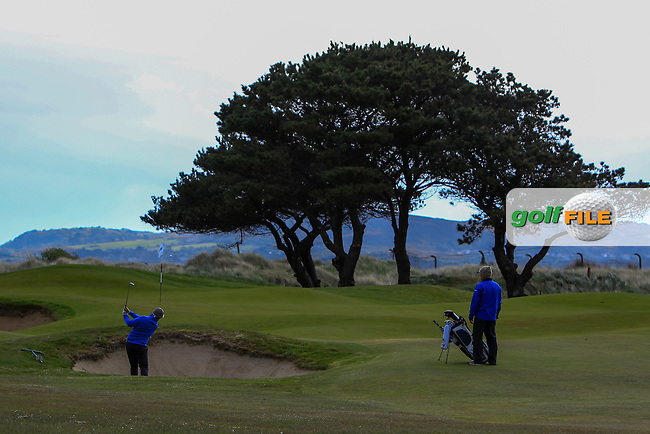 Nathan Brader (POR) in a bunker on the 2nd during Round 1 of the Flogas Irish Amateur Open Championship at Royal Dublin on Thursday 5th May 2016.<br /> Picture:  Thos Caffrey / www.golffile.ie